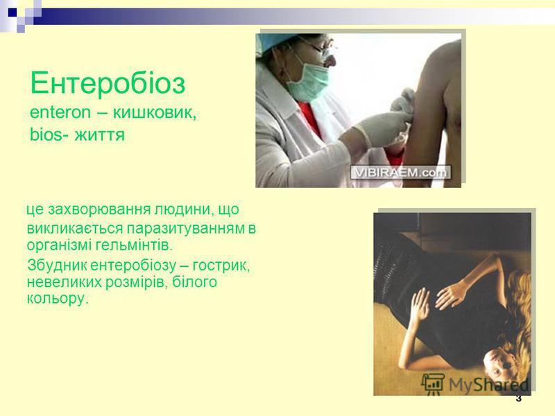 3 Ентеробіоз enteron – кишковик, bios- життя це захворювання людини, що викликається паразитуванням в організмі гельмінтів. Збудник ентеробіозу – гострик, невеликих розмірів, білого кольору.