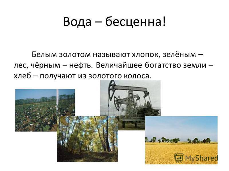 Вода – бесценна! Белым золотом называют хлопок, зелёным – лес, чёрным – нефть. Величайшее богатство земли – хлеб – получают из золотого колоса.