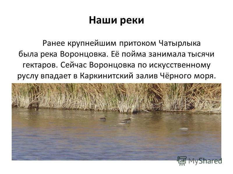 Наши реки Ранее крупнейшим притоком Чатырлыка была река Воронцовка. Её пойма занимала тысячи гектаров. Сейчас Воронцовка по искусственному руслу впадает в Каркинитский залив Чёрного моря.