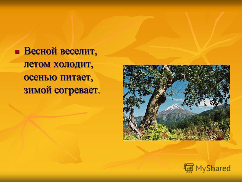 Весной веселит, летом холодит, осенью питает, зимой согревает. Весной веселит, летом холодит, осенью питает, зимой согревает.
