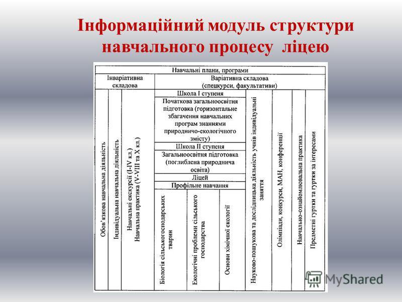 Інформаційний модуль структури навчального процесу ліцею