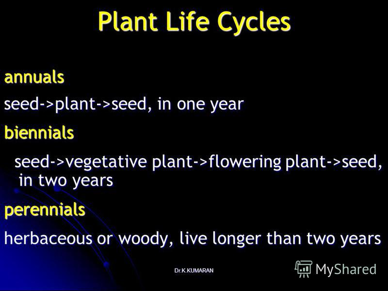 Dr.K.KUMARAN Plant Life Cycles annuals seed->plant->seed, in one year biennials seed->vegetative plant->flowering plant->seed, in two years seed->vegetative plant->flowering plant->seed, in two yearsperennials herbaceous or woody, live longer than tw