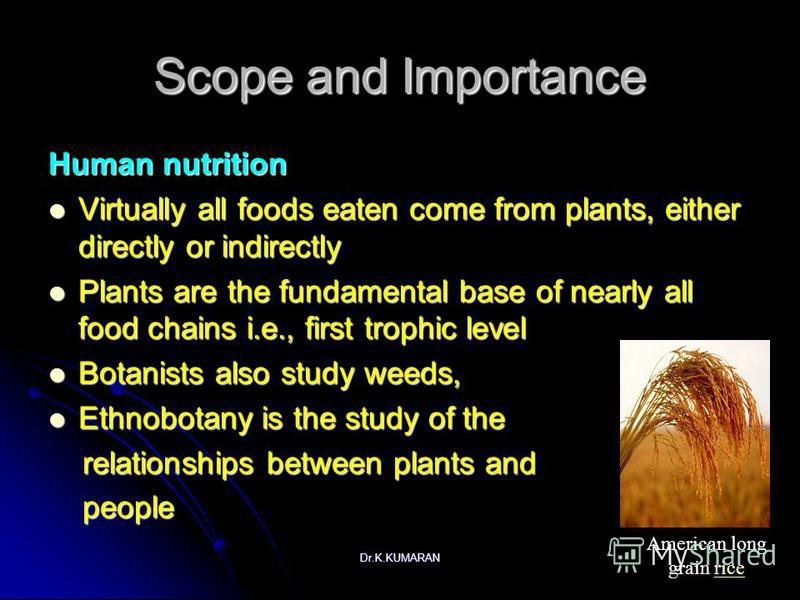 Dr.K.KUMARAN Scope and Importance Human nutrition Virtually all foods eaten come from plants, either directly or indirectly Virtually all foods eaten come from plants, either directly or indirectly Plants are the fundamental base of nearly all food c