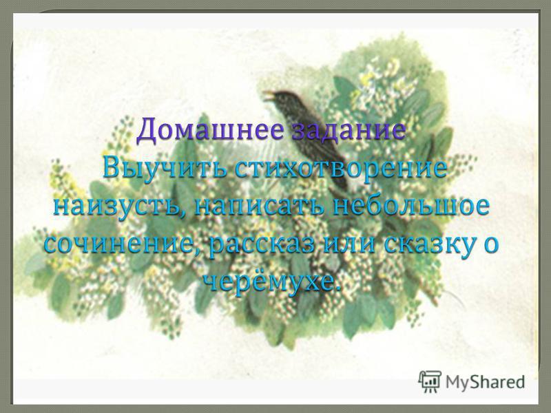 Творческое задание Нарисовать иллюстрацию к стихотворению С. А. Есенина « Черёмуха » или рисунок на весеннюю тему