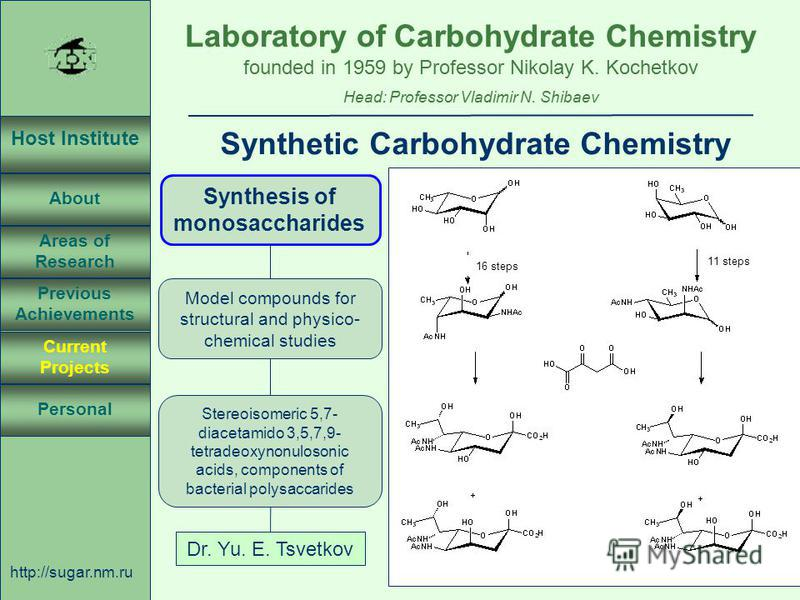 Laboratory of Carbohydrate Chemistry Head: Professor Vladimir N. Shibaev founded in 1959 by Professor Nikolay K. Kochetkov Host Institute About Previous Achievements Current Projects Areas of Research Personal http://sugar.nm.ru 24 April 3, 2003, Ros