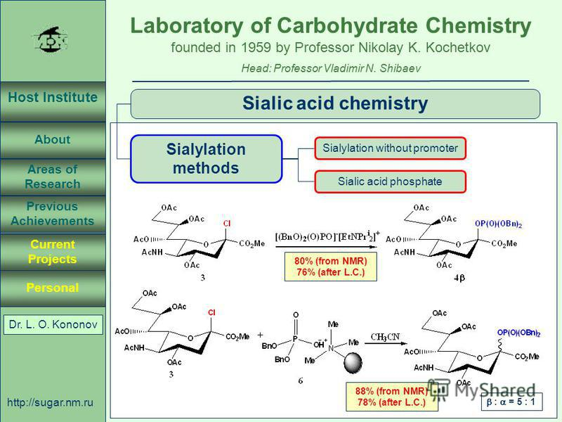 Laboratory of Carbohydrate Chemistry Head: Professor Vladimir N. Shibaev founded in 1959 by Professor Nikolay K. Kochetkov Host Institute About Previous Achievements Current Projects Areas of Research Personal http://sugar.nm.ru 37 April 3, 2003, Ros