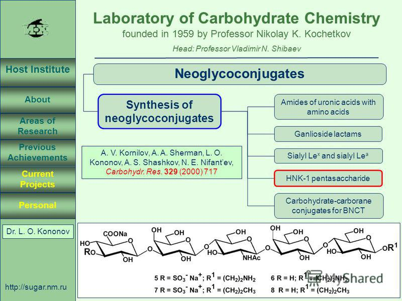 Laboratory of Carbohydrate Chemistry Head: Professor Vladimir N. Shibaev founded in 1959 by Professor Nikolay K. Kochetkov Host Institute About Previous Achievements Current Projects Areas of Research Personal http://sugar.nm.ru 46 April 3, 2003, Ros