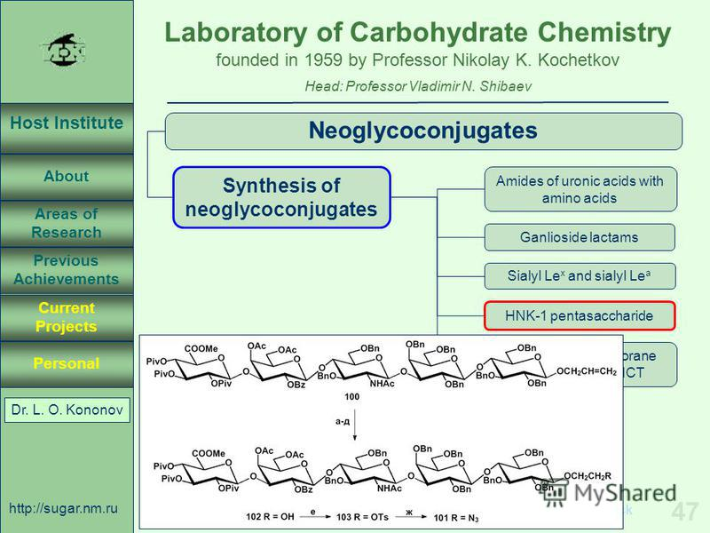 Laboratory of Carbohydrate Chemistry Head: Professor Vladimir N. Shibaev founded in 1959 by Professor Nikolay K. Kochetkov Host Institute About Previous Achievements Current Projects Areas of Research Personal http://sugar.nm.ru 47 April 3, 2003, Ros