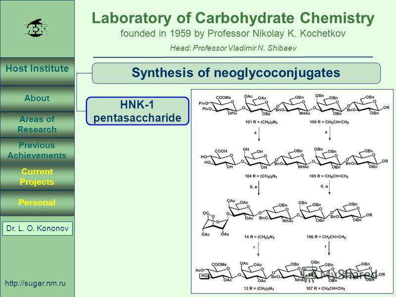 Laboratory of Carbohydrate Chemistry Head: Professor Vladimir N. Shibaev founded in 1959 by Professor Nikolay K. Kochetkov Host Institute About Previous Achievements Current Projects Areas of Research Personal http://sugar.nm.ru 48 April 3, 2003, Ros