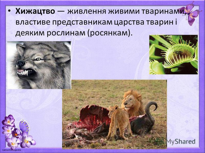 Хижацтво живлення живими тваринами, властиве представникам царства тварин і деяким рослинам (росянкам).