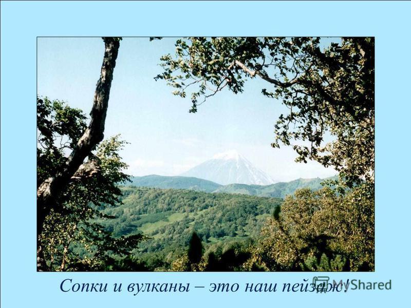 Сопки и вулканы – это наш пейзаж!