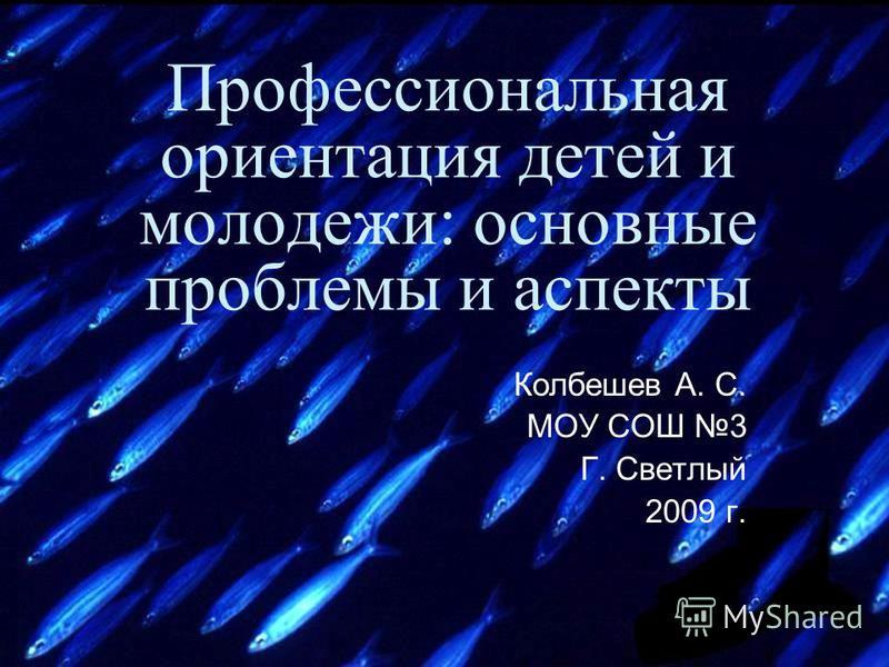Профессиональная ориентация детей и молодежи: основные проблемы и аспекты Колбешев А. С. МОУ СОШ 3 Г. Светлый 2009 г.