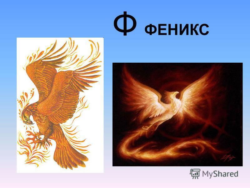 Ф ФЕНИКС