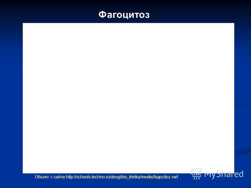 Фагоцитоз Объект с сайта http://schools.techno.ru/doog/bio_kletka/media/fagocitoz.swf