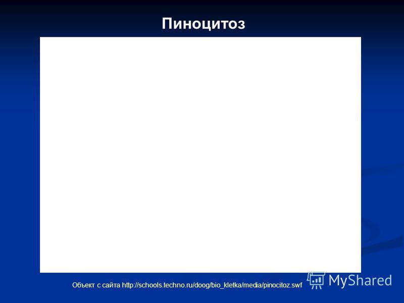 Пиноцитоз Объект с сайта http://schools.techno.ru/doog/bio_kletka/media/pinocitoz.swf