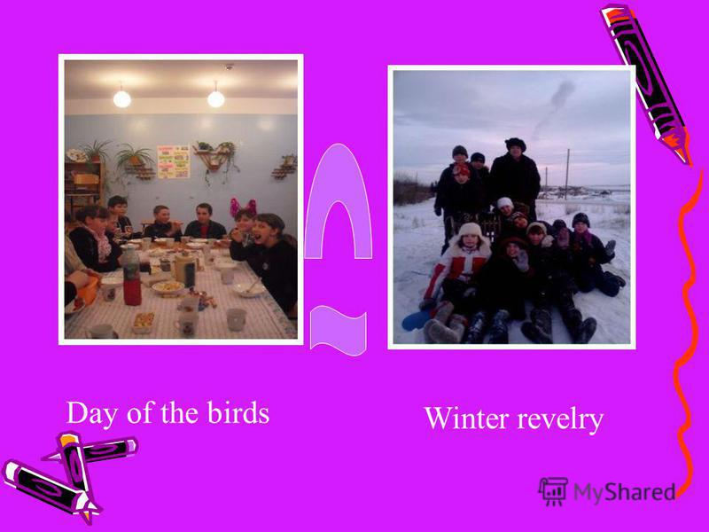 Day of the birds Winter revelry