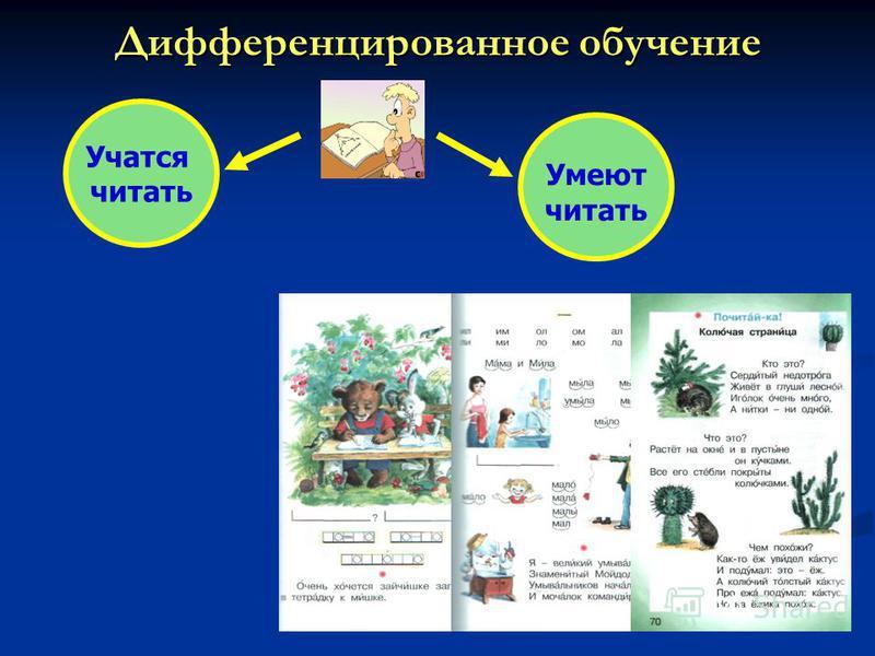 Дифференцированное обучение Учатся читать Умеют читать