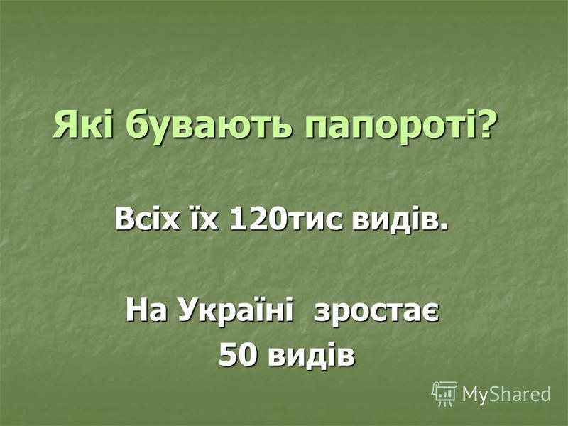 Які бувають папороті? Всіх їх 120тис видів. На Україні зростає 50 видів 50 видів
