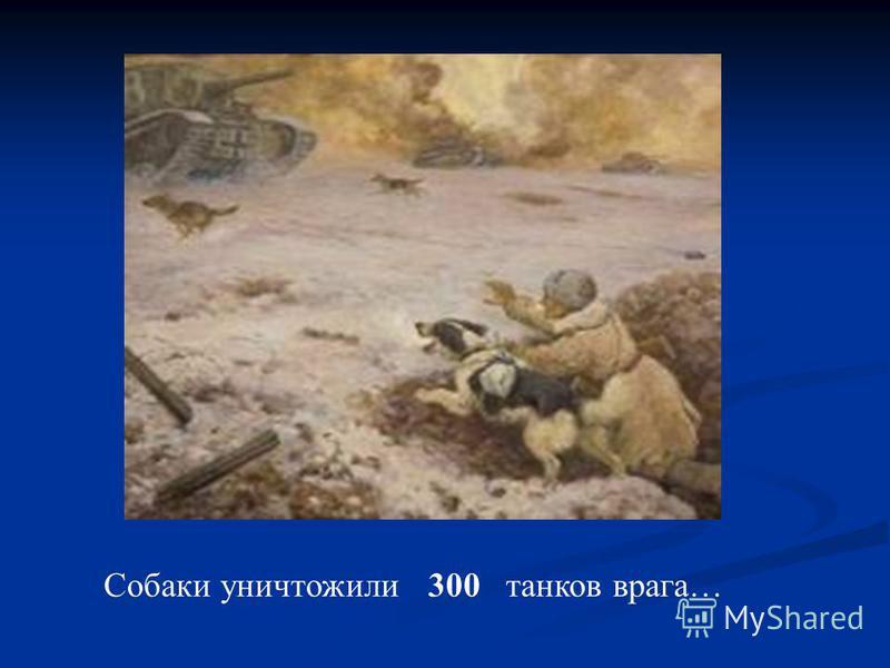 Собаки уничтожили 300 танков врага…
