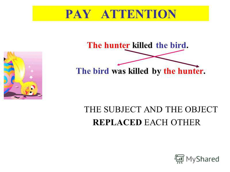 PAY ATTENTION The hunter killed the bird. The bird was killed by the hunter. THE SUBJECT AND THE OBJECT REPLACED EACH OTHER