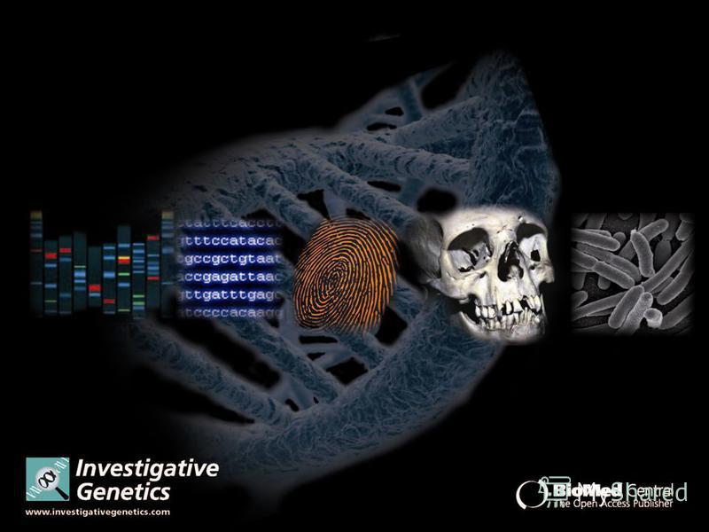 МОЛЕКУЛЯРНО-ГЕНЕТИЧНІ – вивчення структури ДНК, подібності чи відмінності різних геномів та окремих генів
