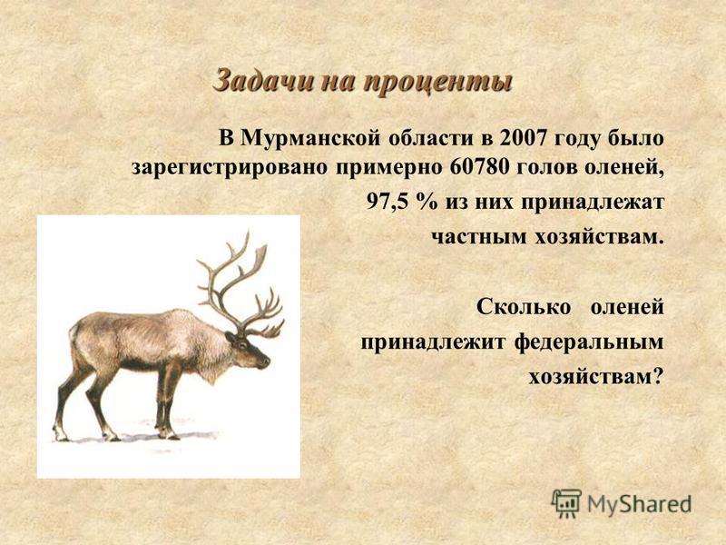 Задачи на проценты В Мурманской области в 2007 году было зарегистрировано примерно 60780 голов оленей, 97,5 % из них принадлежат частным хозяйствам. Сколько оленей принадлежит федеральным хозяйствам?