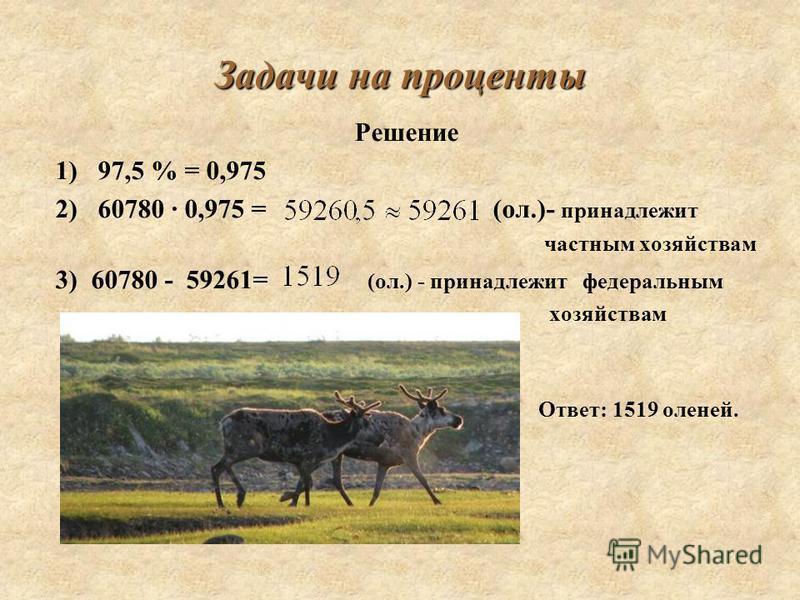 Задачи на проценты Решение 1) 97,5 % = 0,975 2) 60780 · 0,975 = (ол.)- принадлежит частным хозяйствам 3) 60780 - 59261= (ол.) - принадлежит федеральным хозяйствам Ответ: 1519 оленей.