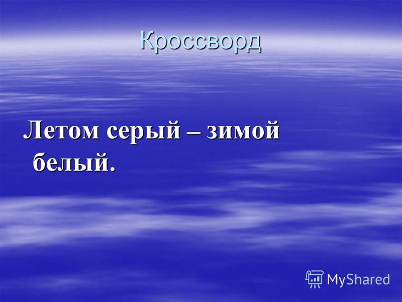 Кроссворд Летом серый – зимой белый. Летом серый – зимой белый.