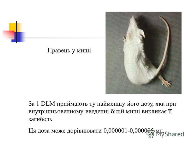 Правець у миші За 1 DLM приймають ту найменшу його дозу, яка при внутрішньовенному введенні білій миші викликає її загибель. Ця доза може дорівнювати 0,000001-0,000005 мл.