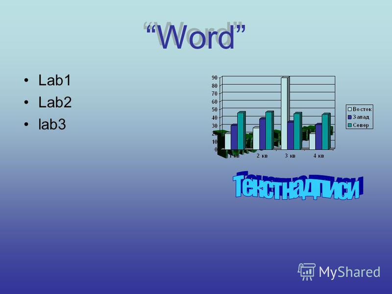 Word Lab1 Lab2 lab3