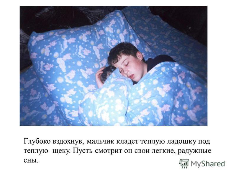 Глубоко вздохнув, мальчик кладет теплую ладошку под теплую щеку. Пусть смотрит он свои легкие, радужные сны.