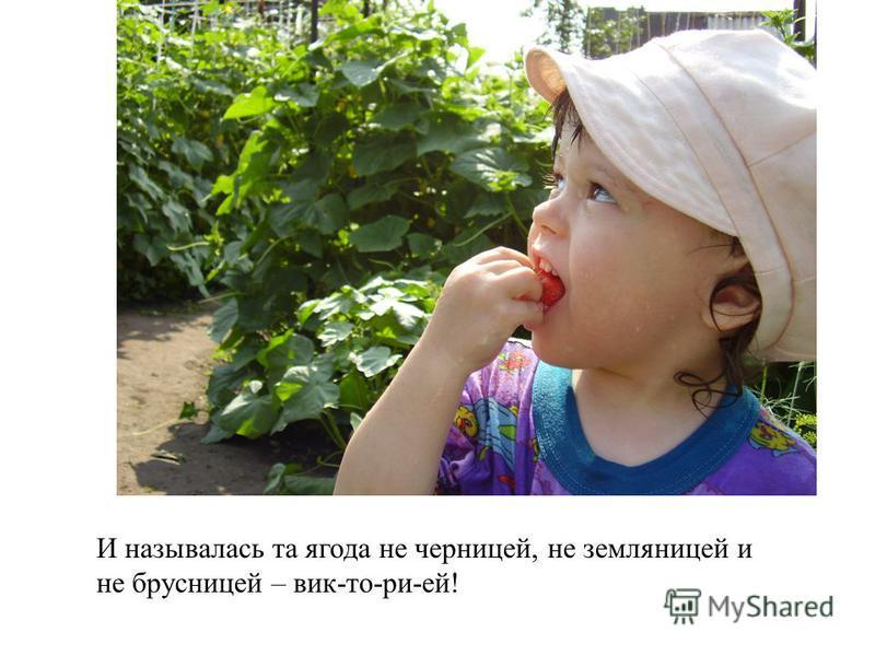 И называлась та ягода не черницей, не земляницей и не брусницей – вик-то-ри-ей!