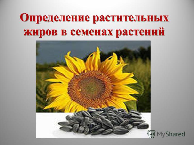 Определение растительных жиров в семенах растений 10