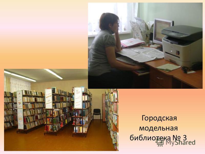 Городская модельная библиотека 3