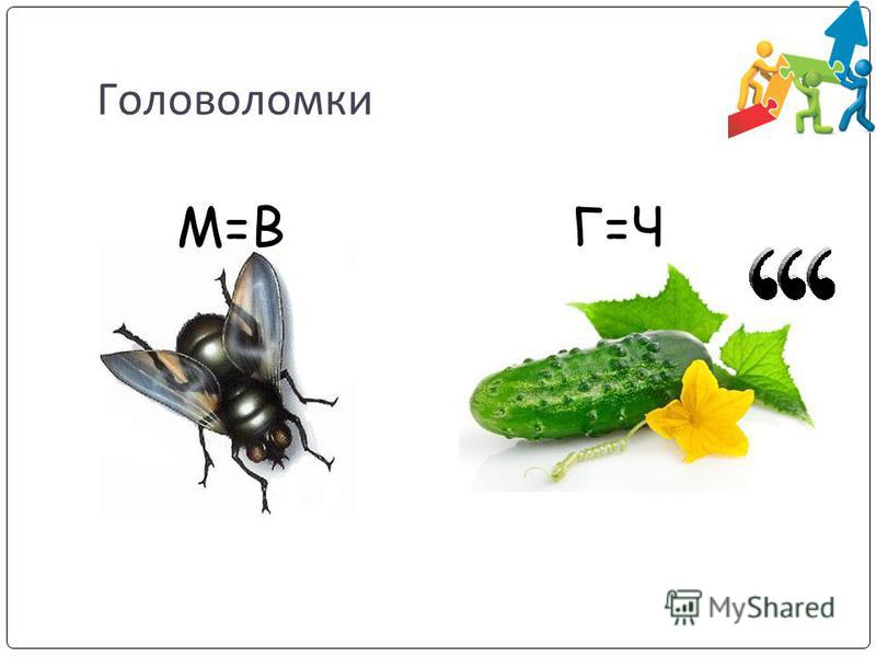 Головоломки М=ВГ=Ч