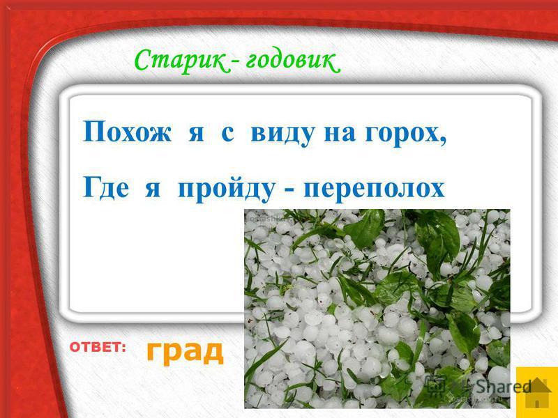 5040302010 Природа просит о помощи 5040302010 Загадки лесовичка 5040302010 Царство растений 5040302010 Знакомые незнакомцы 5040302010 Старик - годовик СВОЯ ИГРА КАТЕГОРИИ ВОПРОСОВ