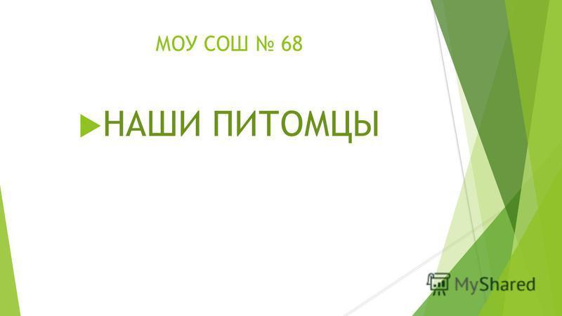 МОУ СОШ 68 НАШИ ПИТОМЦЫ