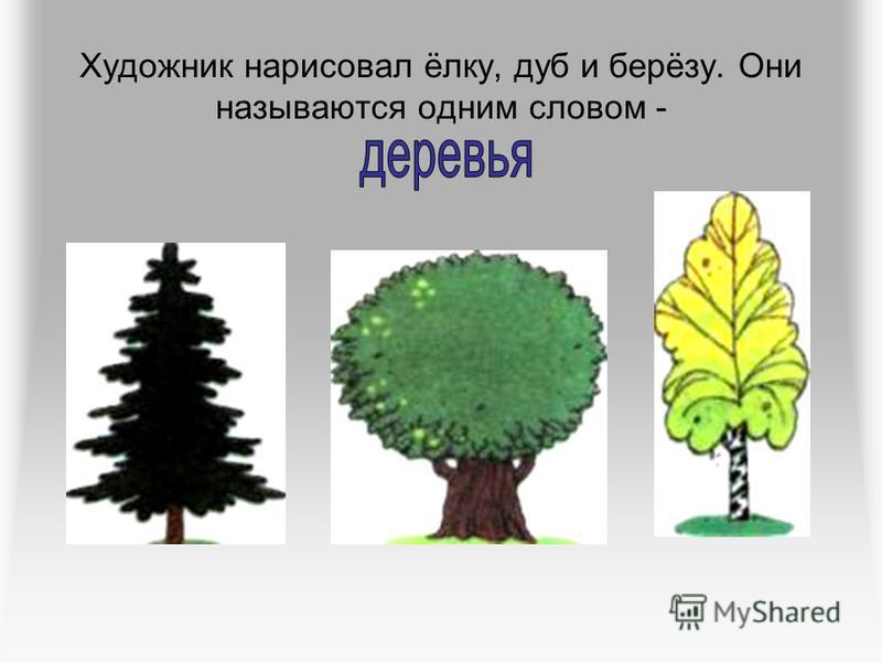Художник нарисовал ёлку, дуб и берёзу. Они называются одним словом -