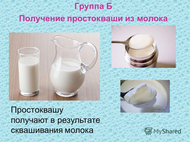 Группа Б Получение простокваши из молока Простоквашу получают в результате сквашивания молока