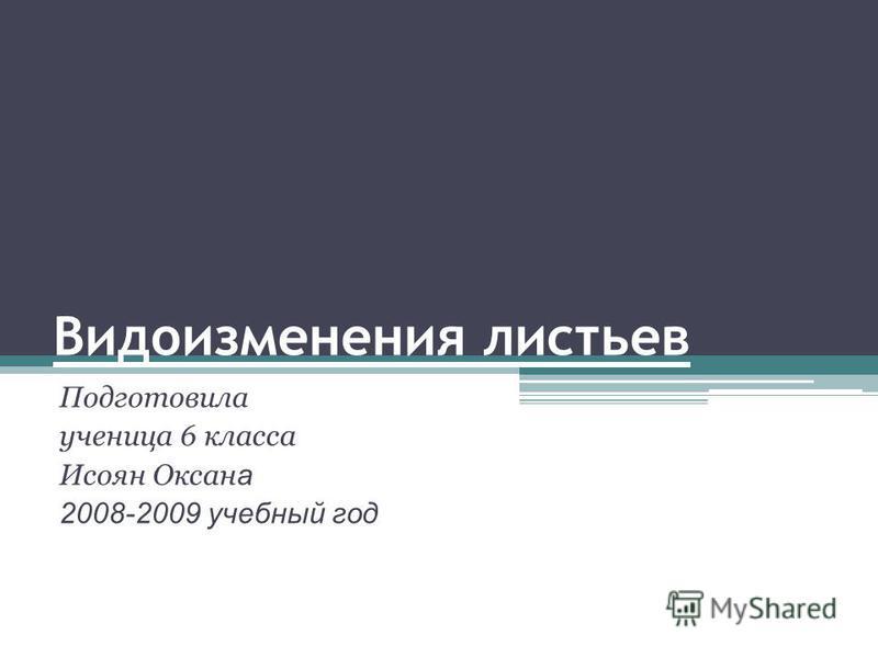 Видоизменения листьев Подготовила ученица 6 класса Исоян Оксан а 2008-2009 учебный год