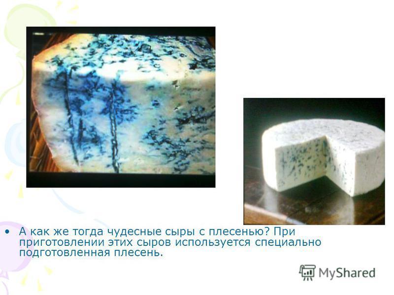 А как же тогда чудесные сыры с плесенью? При приготовлении этих сыров используется специально подготовленная плесень.