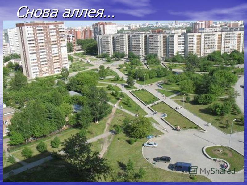 Это улица Черепанова…