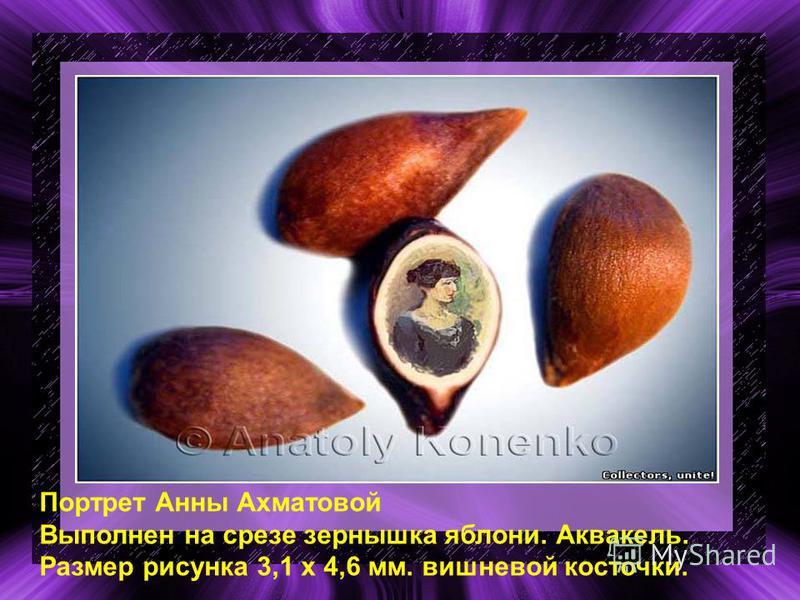 Портрет Анны Ахматовой Выполнен на срезе зернышка яблони. Аквакель. Размер рисунка 3,1 х 4,6 мм. вишневой косточки.