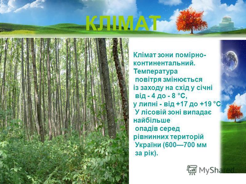 КЛІМАТ Клімат зони помірно- континентальний. Температура повітря змінюється із заходу на схід у січні від - 4 до - 8 °С, у липні - від +17 до +19 °С. У лісовій зоні випадає найбільше опадів серед рівнинних територій України (600700 мм за рік).