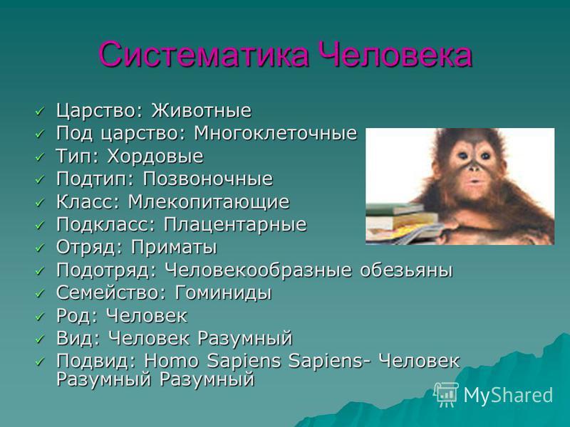 Систематика Человека Царство: Животные Царство: Животные Под царство: Многоклеточные Под царство: Многоклеточные Тип: Хордовые Тип: Хордовые Подтип: Позвоночные Подтип: Позвоночные Класс: Млекопитающие Класс: Млекопитающие Подкласс: Плацентарные Подк