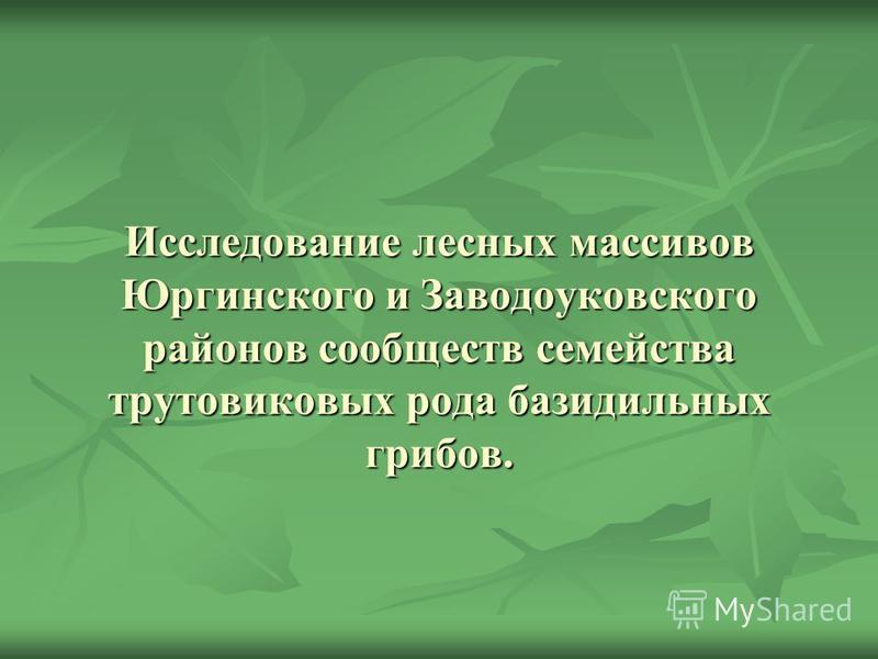 Исследование лесных массивов Юргинского и Заводоуковского районов сообществ семейства трутовиковых рода базидиальных грибов.