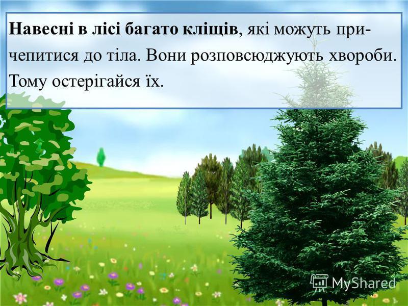 Навесні в лісі багато кліщів, які можуть при - чепитися до тіла. Вони розповсюджують хвороби.Тому остерігайся їх.
