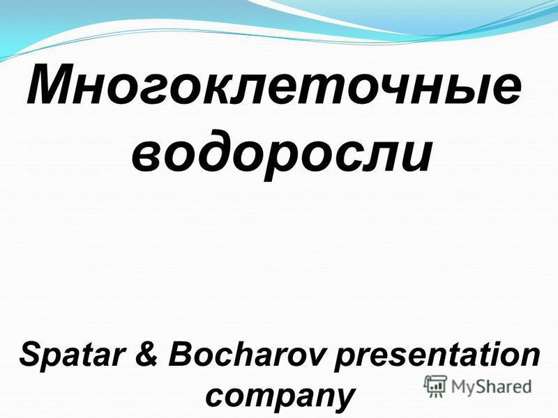 Многоклеточные водоросли Spatar & Bocharov presentation company