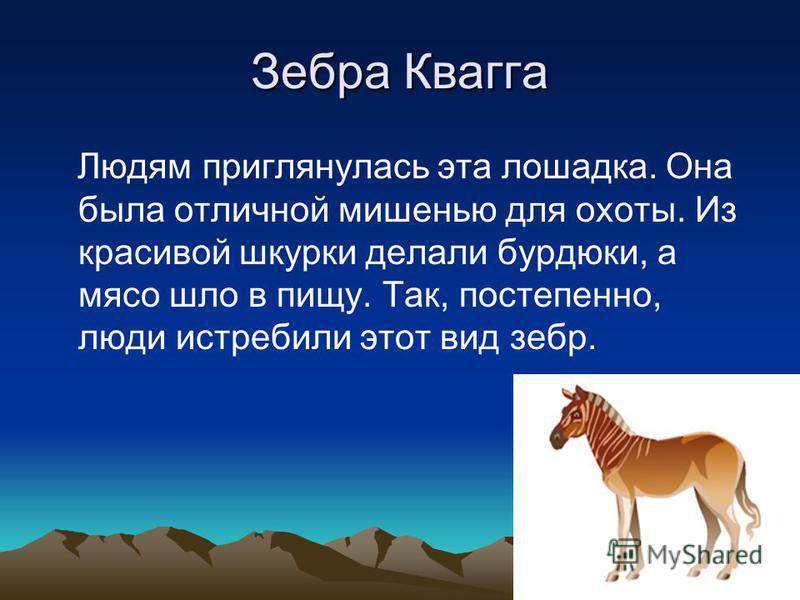 Зебра Квагга Людям приглянулась эта лошадка. Она была отличной мишенью для охоты. Из красивой шкурки делали бурдюки, а мясо шло в пищу. Так, постепенно, люди истребили этот вид зебр.