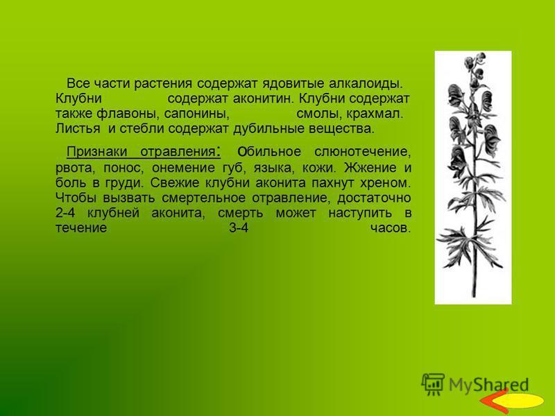 Все части растения содержат ядовитые алкалоиды. Клубни содержат аконитин. Клубни содержат также флавоны, сапонины, смолы, крахмал. Листья и стебли содержат дубильные вещества. Признаки отравления : о бильное слюнотечение, рвота, понос, онемение губ,